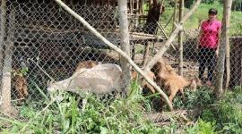 Huyện Vĩnh Cửu ( Đồng Nai): Nỗ lực thoát nghèo bền vững