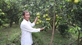 TP Cần Thơ triển khai đồng bộ các giải pháp giảm nghèo bền vững
