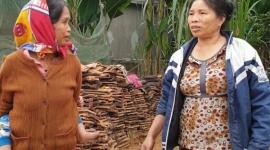 Phòng chống dịch bệnh COVID-19: Nắm bắt kịp thời lao động bất hợp pháp trở về