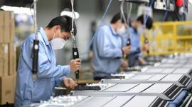 ILO: 1/6 thanh niên thế giới bị mất việc làm do đại dịch Covid-19