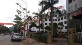 Sơn La: Triển khai Kế hoạch phòng, chống mại dâm năm 2020