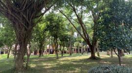 Trung tâm Điều dưỡng thương binh Duy Tiên: Đảm bảo tốt vệ sinh, môi trường để nâng cao chất lượng nuôi dưỡng, điều trị cho thương, bệnh binh