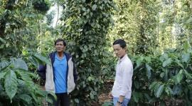 Đắk Lắk triển khai nhiều dự án hỗ trợ giảm nghèo tại các huyện nghèo và các xã đặc biệt khó khăn