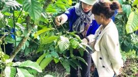 Lâm Đồng: Điểm sáng trong công tác giảm nghèo