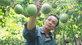 Nỗ lực giảm nghèo ở huyện Lạc Dương (Lâm Đồng)
