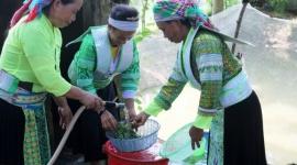Đảm bảo an sinh xã hội cho đồng bào dân tộc thiểu số ở Thái Nguyên