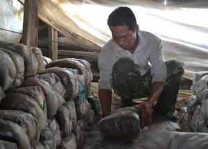 Nhiều điểm sáng trong dạy nghề cho lao động nông thôn tại huyện Krông Ana (Đắk Lắk)