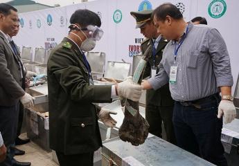 10 hành động nhằm chấm dứt nạn buôn bán trái phép động vật hoang dã nguy cấp, quý, hiếm tại Việt Nam