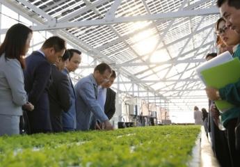 FLC dự kiến đầu tư 1,5 tỷ USD vào nông nghiệp công nghệ cao Việt Nam