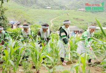 Năm 2020: Tỷ lệ hộ nghèo ở Thái Nguyên còn 3,1%