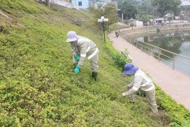 Sơn La tập trung đẩy mạnh công tác an toàn vệ sinh lao động