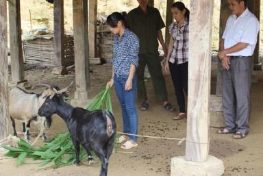 Hà Giang: Chung tay hỗ trợ nạn nhân bị mua bán trở về