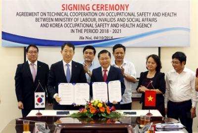 Đẩy mạnh hợp tác Việt Nam – Hàn Quốc trong lĩnh vực an toàn vệ sinh lao động