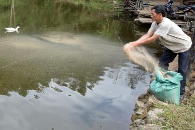 Hội Nông dân huyện Mường Chà  Ðẩy mạnh công tác xóa đói giảm nghèo