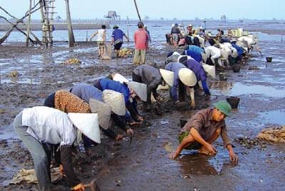 Mở rộng liên kết đào tạo đáp ứng nhu cầu học nghề của lao động nông thôn ở huyện Giao Thủy