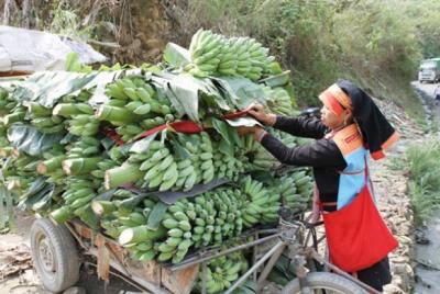 Huyện Yên Châu: Nỗ lực thực hiện công tác bình đẳng giới và vì sự tiến bộ của phụ nữ