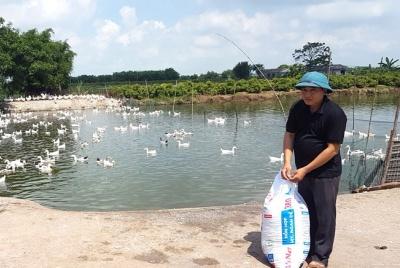 Tỉnh Đoàn Nam Định hỗ trợ thanh niên, đoàn viên trẻ tìm kiếm việc làm, phát triển kinh tế